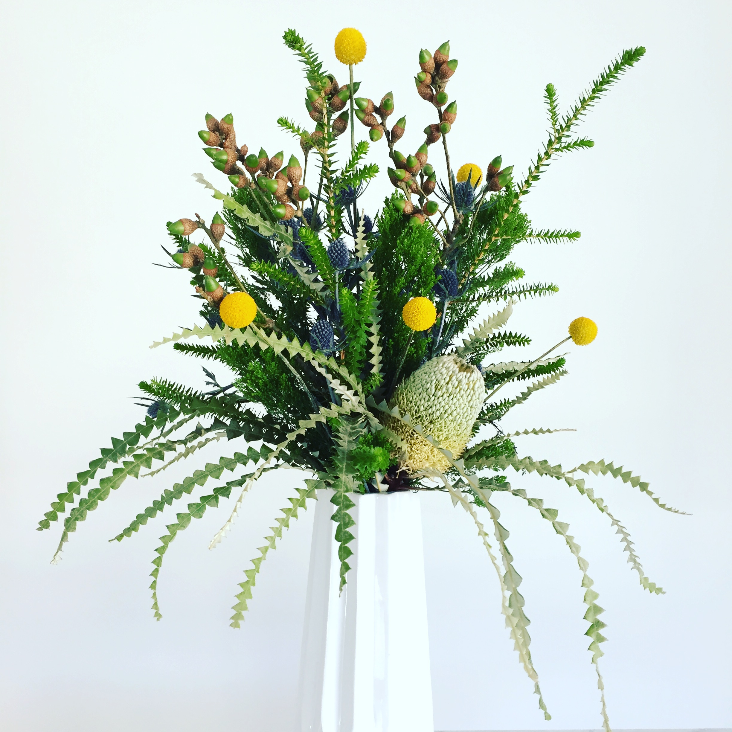 The Banksia